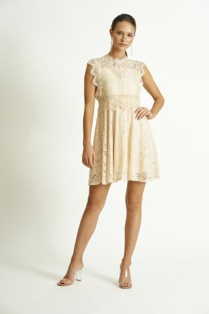 ALL OVER LACE FIT & FLARE HIGH NECK DRESS (325205)